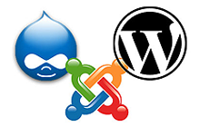 Provide CMS from wordpress, joomla, drupal or a customized cms designed for you